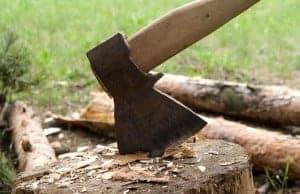 firewood carrierP-log lugger-axe in stump