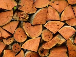 firewood carrierP1960408-log lugger-wood pile