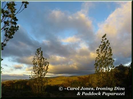 Ironing Diva 009 P1630967 Stormy Hills