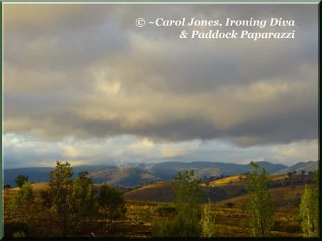 Ironing Diva 009 P1710005 Storny Hills