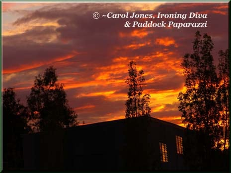 Ironing-Diva Metro Pro 14 Fiery-Red-Sunrise