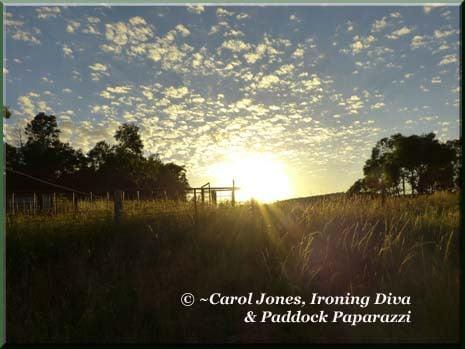 Ironing-Diva Metro Pro 14 Sunrise Fluffy Clouds