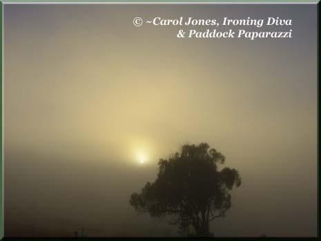 Ironing-Diva-Sunrise-5-Fog