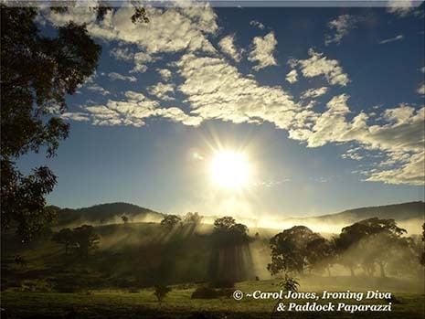 Ironing Diva Metro Pro 084 A Foggy Sunrise. Mystical. 2016 July 11