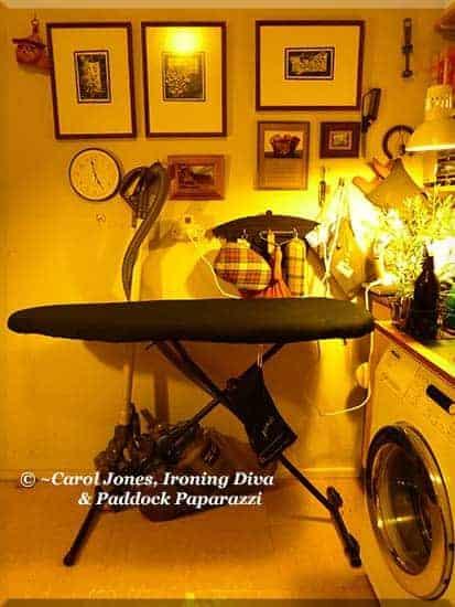 Ironing Diva Metro Pro 067 P2510944 Laundry. Ironing Board. Black Legs. 2016 August 04