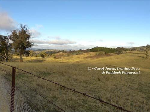 #1 Hills. Panorama. Bluish Grey Sky. Clouds. 500 x 375 2016 July 13 (BLOG)