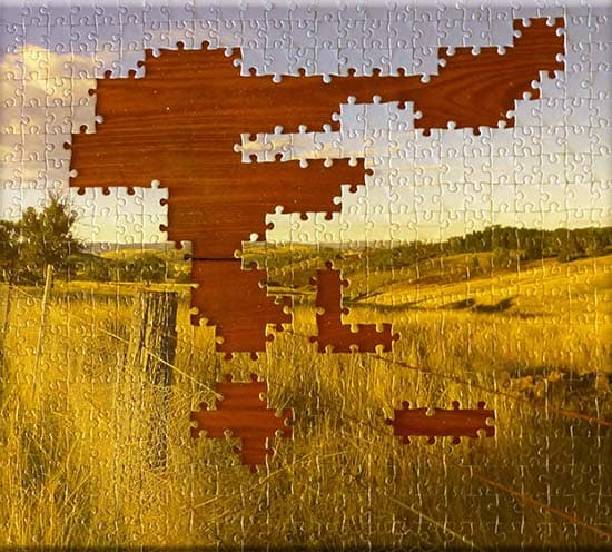 Jigsaw Puzzles By The Paddock Paparazzi